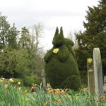 Squirrel topiary